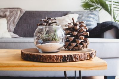 Bring some natural inspiration into your home