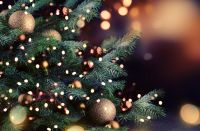 Plant of the Week: Christmas trees